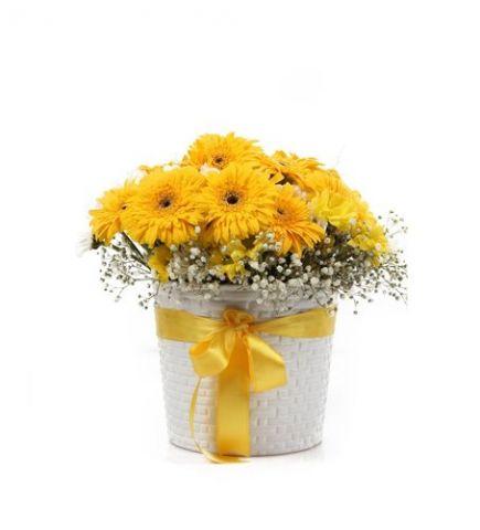 Seramik Vazoda Sarı Gerbera